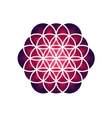 Purple Flower of Life vector image
