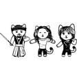 modern black and white kittens part 6 vector image