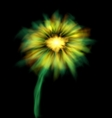 Abstract Glowing Flower Isolated on Black vector image