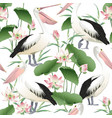 seamless pattern with graceful pelicans vector image