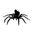 arachne spider monster woman silhouette ancient vector image