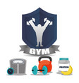 gym man weight food chronometer label vector image