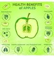 Apple Health Benefits vector image