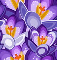 crocus flower seamless background vector image