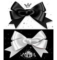 black and white gift bows satin isolated glamour vector image