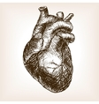 Human heart sketch style vector image