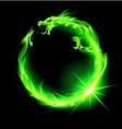 Dragon Circ NT Green 01 vector image vector image