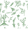 Garden flowers seamless pattern sketch vector image vector image