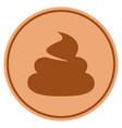 shit bronze coin vector image