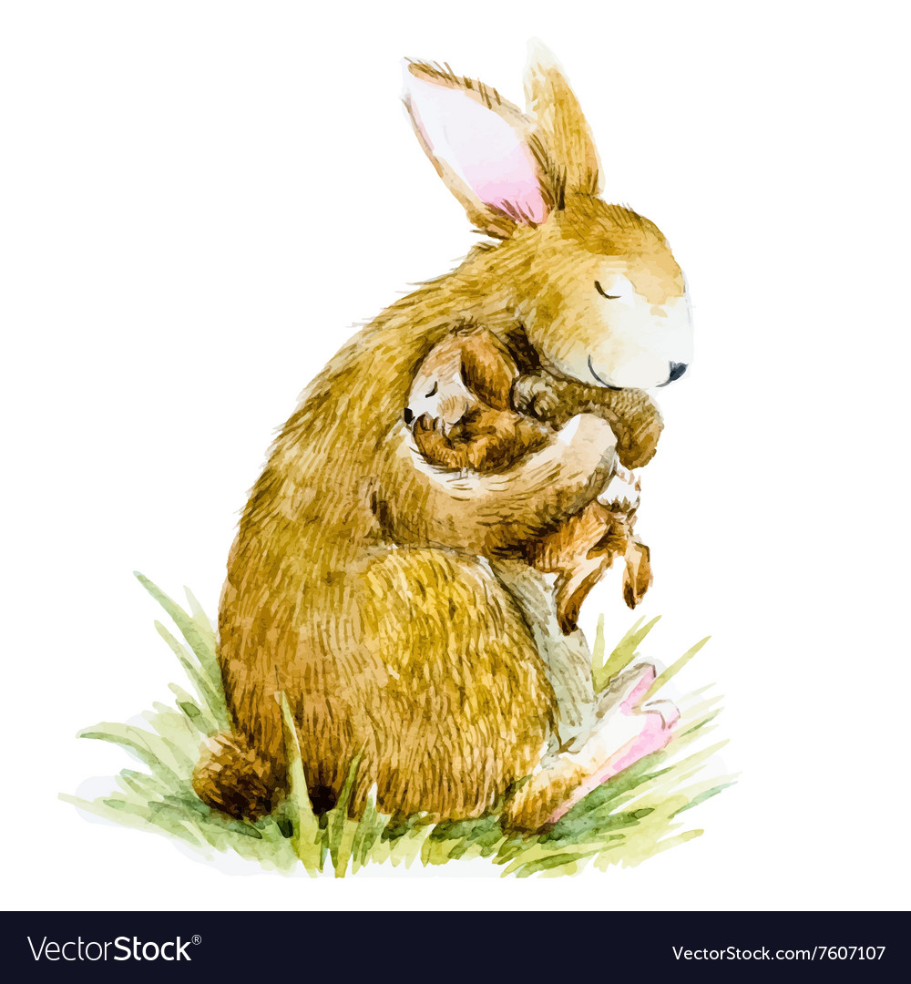 Watercolor rabbit with baby vector