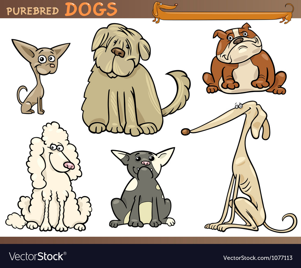 Purebred dogs cartoon set vector
