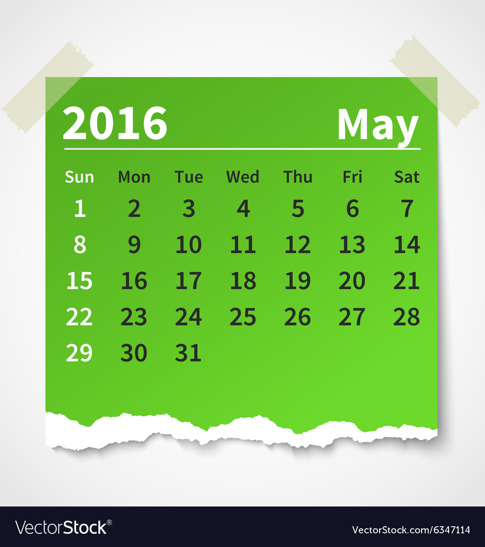 Calendar may 2016 colorful torn paper vector