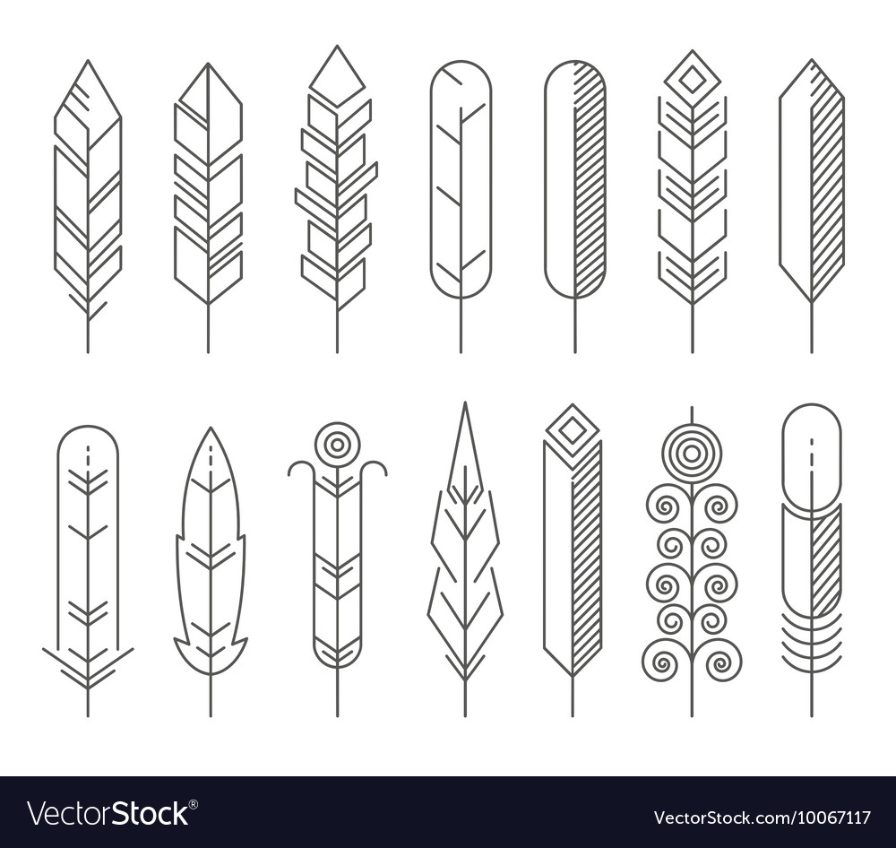 Hipster line feathers set vector