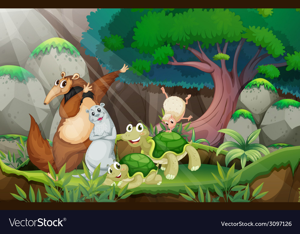 Animals and jungle vector