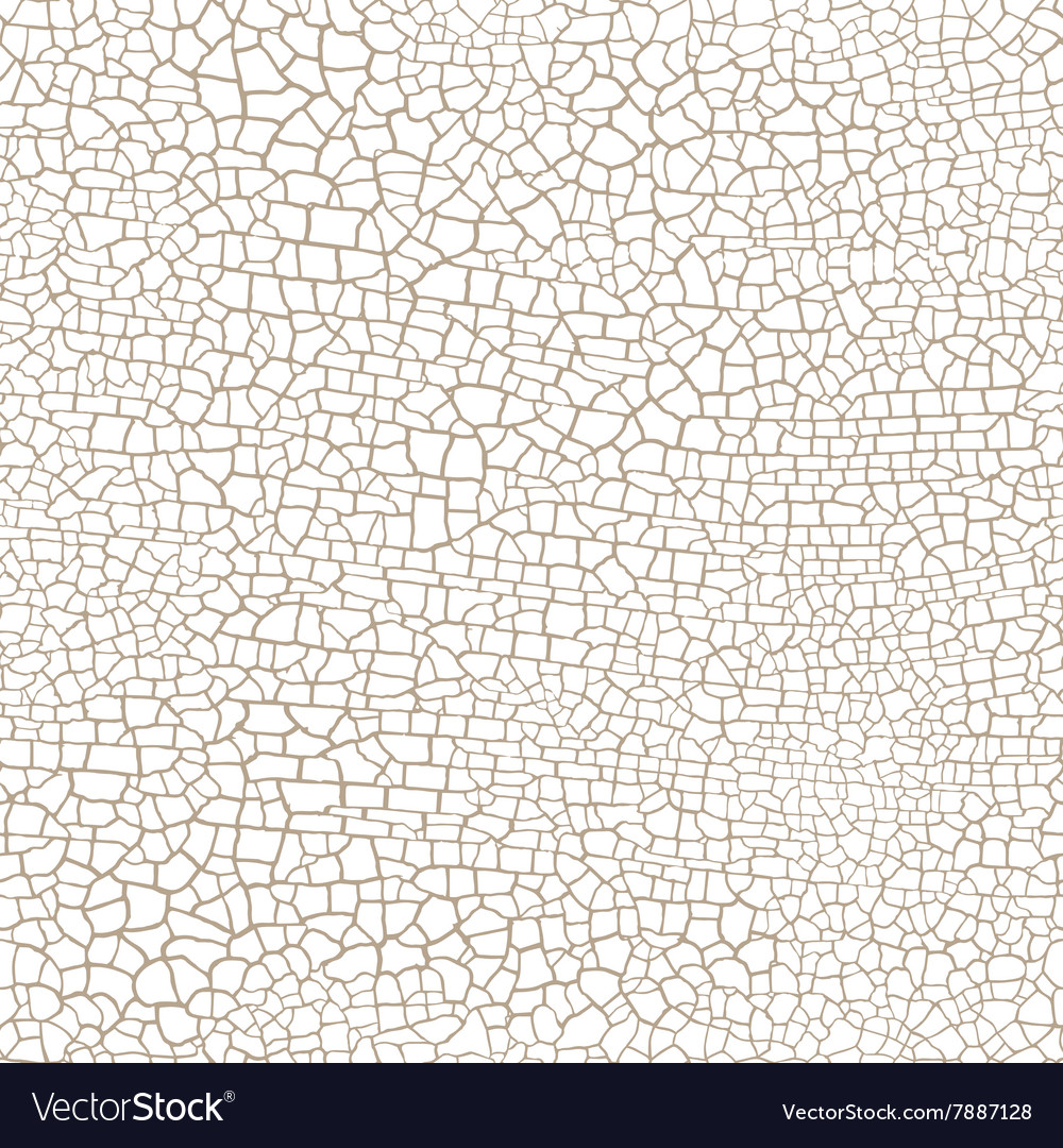 Craquelure seamless pattern on a white background vector