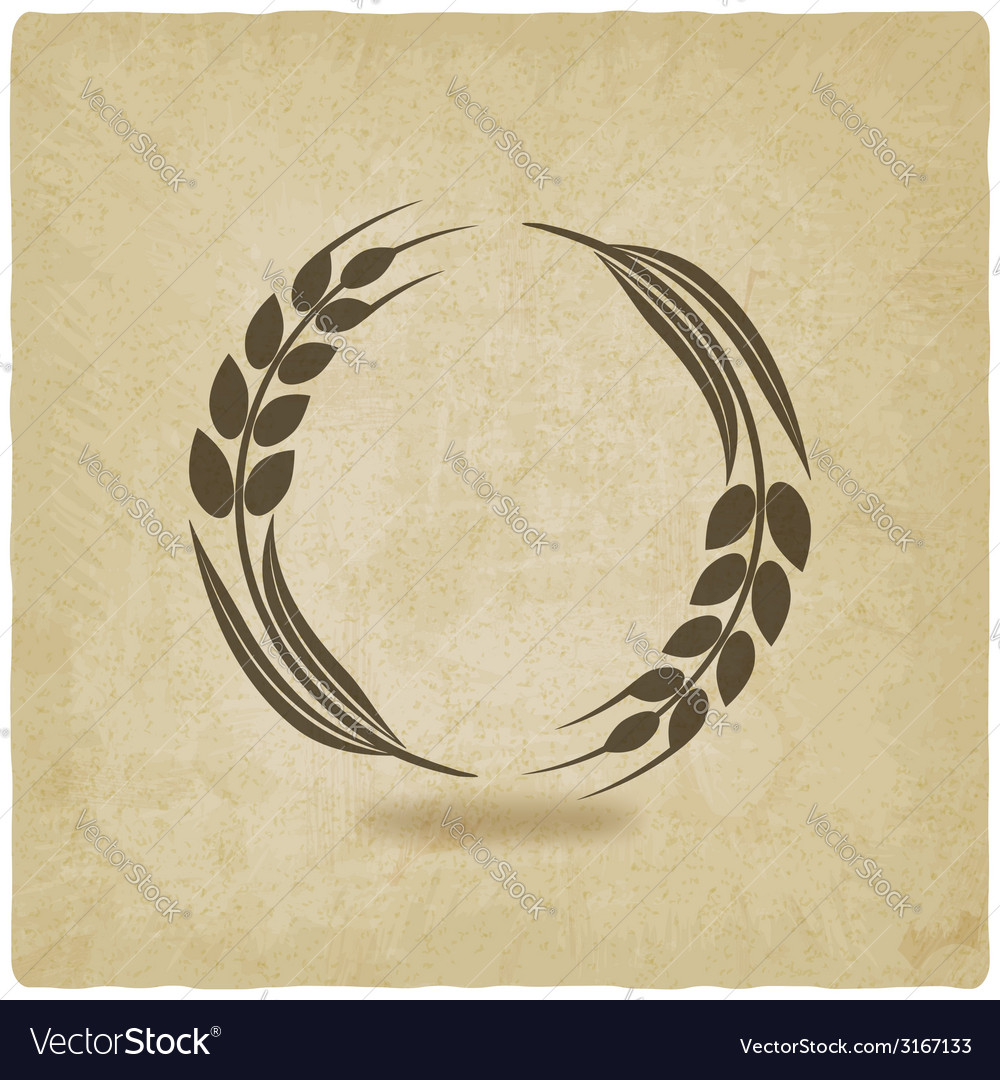 Wheat old background vector