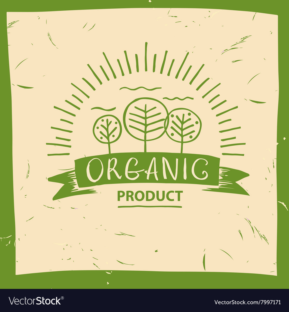 Organic product hand drawn three fruit vector