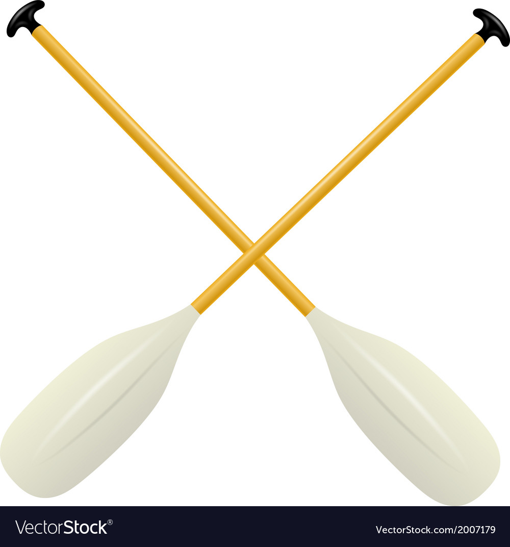 Two oars for canoe vector