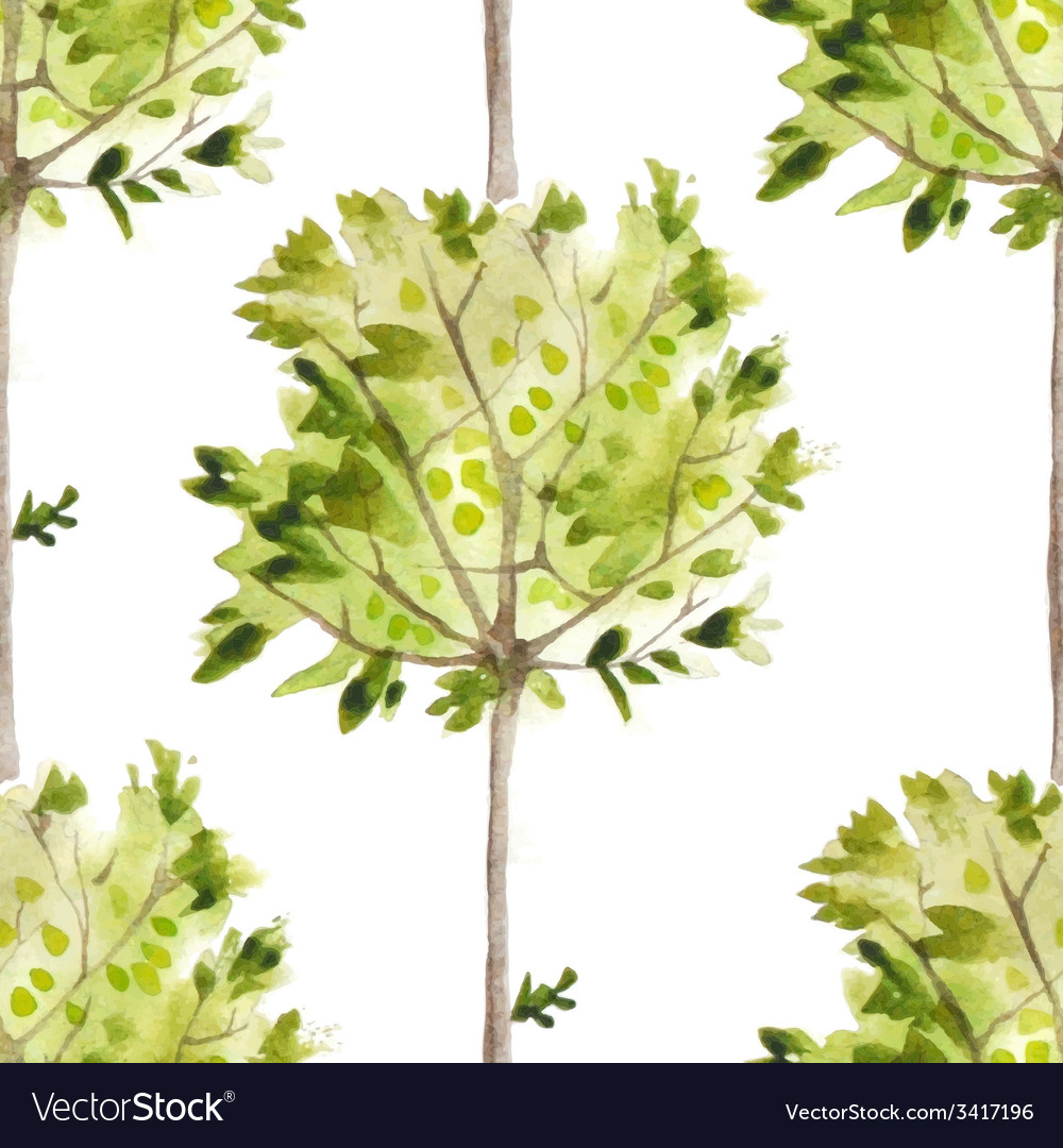 Watercolor pattern with olive trees vector