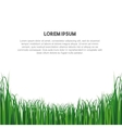 nature grass field background vector image