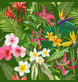 tropical seamless floral summer pattern vector image vector image