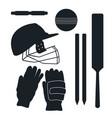 crickets equipment elements vector image