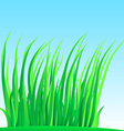 Wisp of lush grass vector image