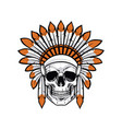 indian native american skull vector image