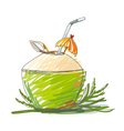Hand drawn green coconut on white background vector image