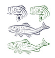big mouth bass and trout set vector image
