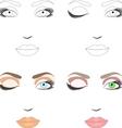 Makeup vector image vector image