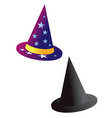 wizards witch hat vector image vector image