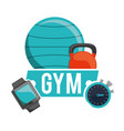 gym fitball barbell watch and chronometer vector image