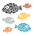 Colorful Fish Shaped Abstract Fish Set vector image vector image