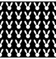 White Rabbit Black Background vector image