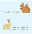 animal footprints include mammals and birds foot vector image