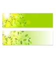 Shiny Spring Natural Leaves Background vector image