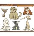 purebred dogs cartoon set vector image