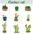 Realistic of Cactus set vector image vector image