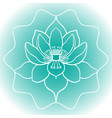 schematic picture of flower lotus in blossom vector image