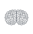 brain human isolated icon design vector image