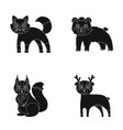 zoo nature reserve and other web icon in black vector image