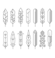 Hipster line feathers set vector image