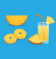 set of pineapple slices isolated on white vector image