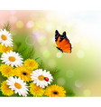 Spring background Flowers and a butterfly vector image
