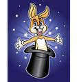 magic rabbit vector image