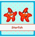 Starfish funny characters on a blue background vector image