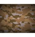 desert camouflage vector image vector image