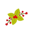 plant leaf flower merry christmas icon vector image