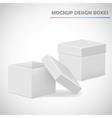 mocup boxes vector image vector image